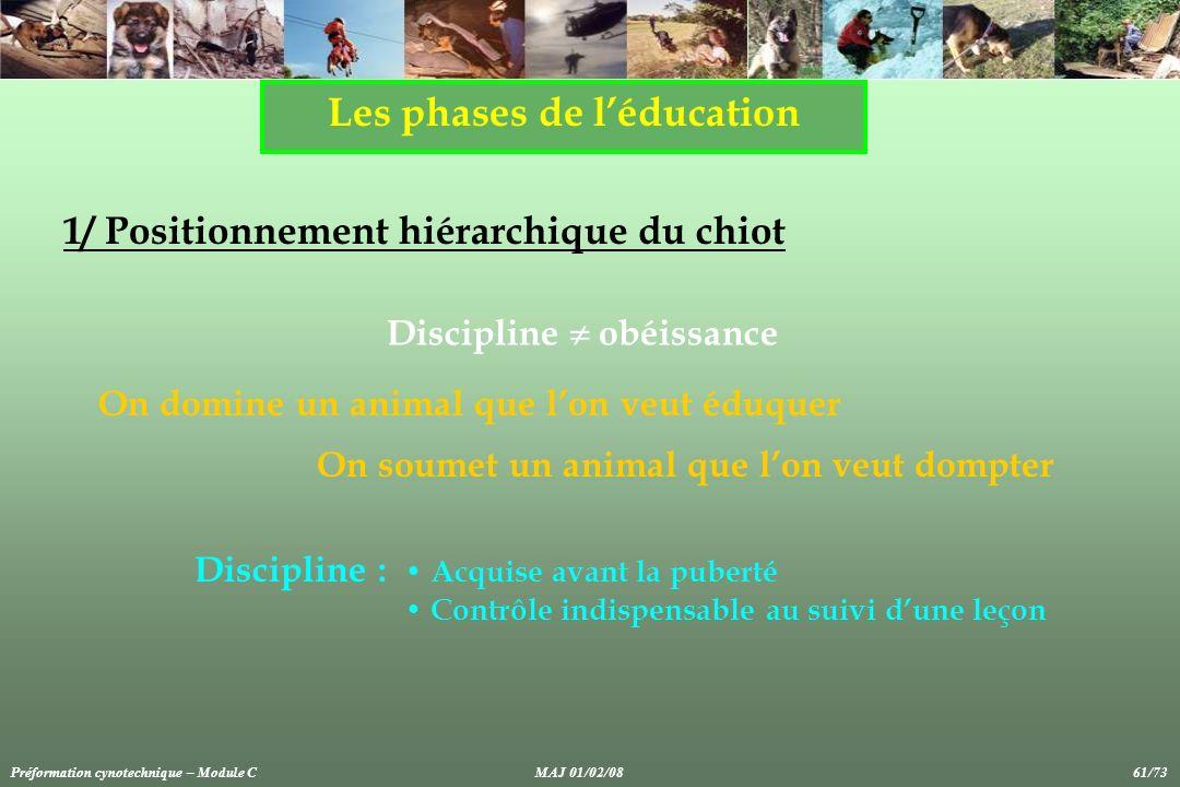 Les phases de léducation 1/ Positionnement hiérarchique du chiot Discipline obéissance On domine un animal que lon veut éduquer On soumet un animal qu