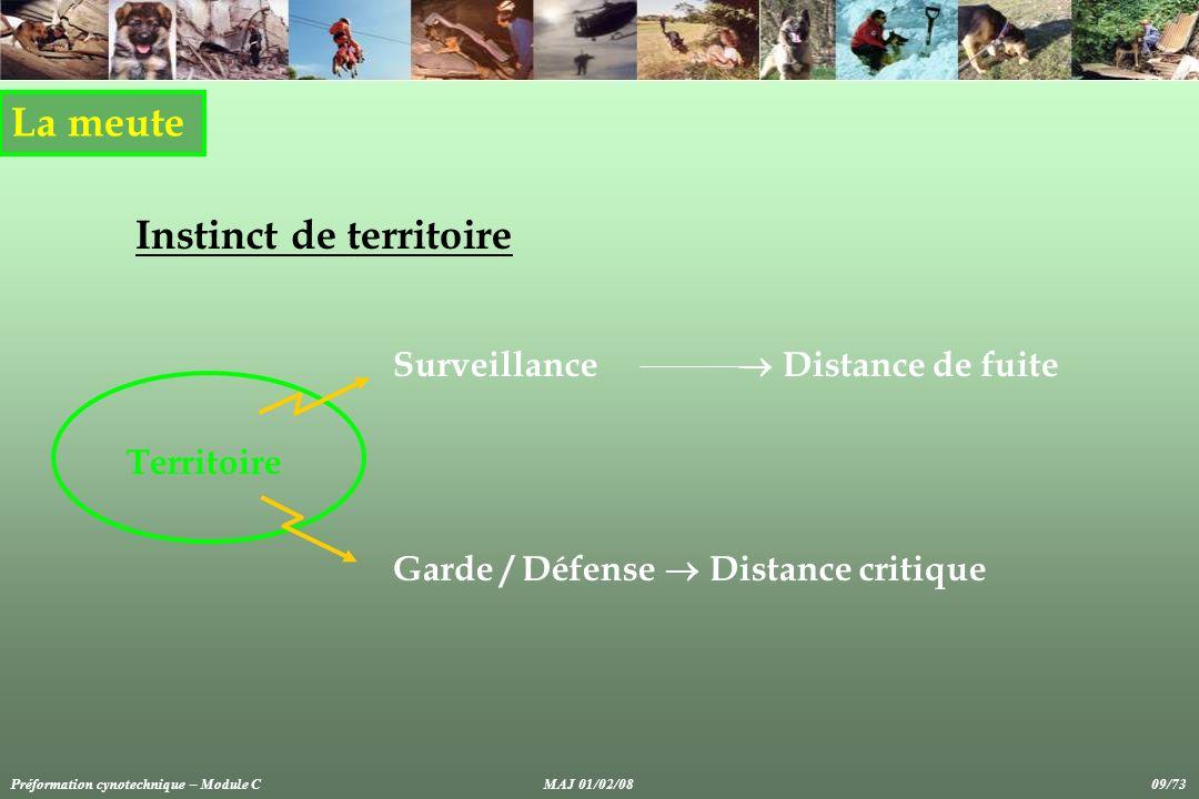 La meute Instinct de territoire Garde / Défense Distance critique Surveillance Distance de fuite Territoire Préformation cynotechnique – Module CMAJ 01/02/08 09/73