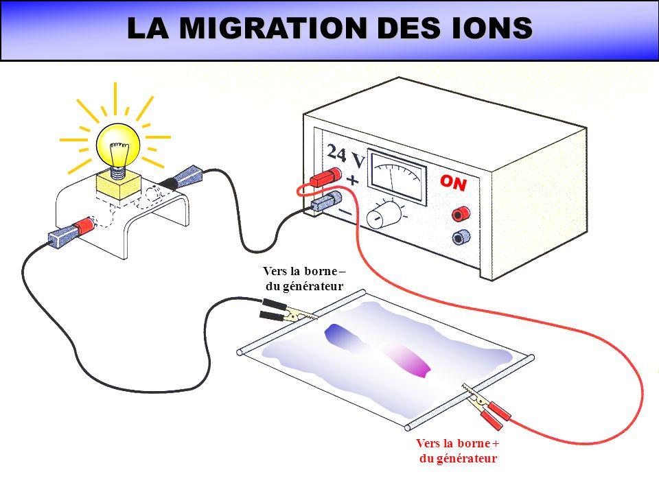 LA MIGRATION DES IONS ON Vers la borne – du générateur Vers la borne + du générateur