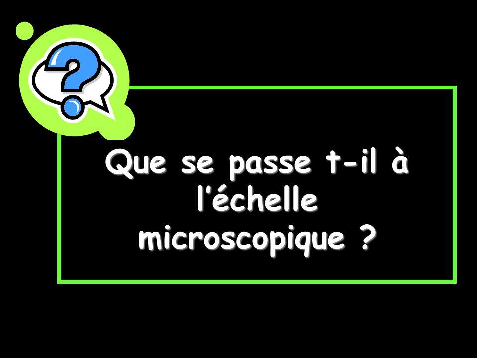 Que se passe t-il à léchelle microscopique ?