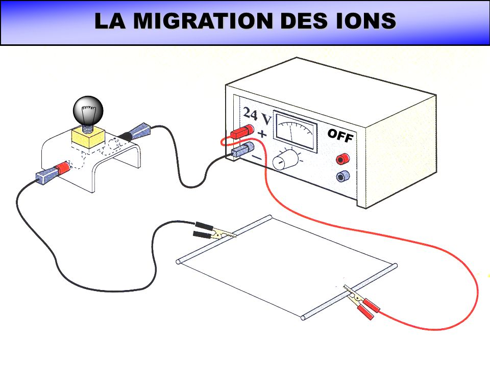 LA MIGRATION DES IONS On imbibe la plaque dune solution ionique…