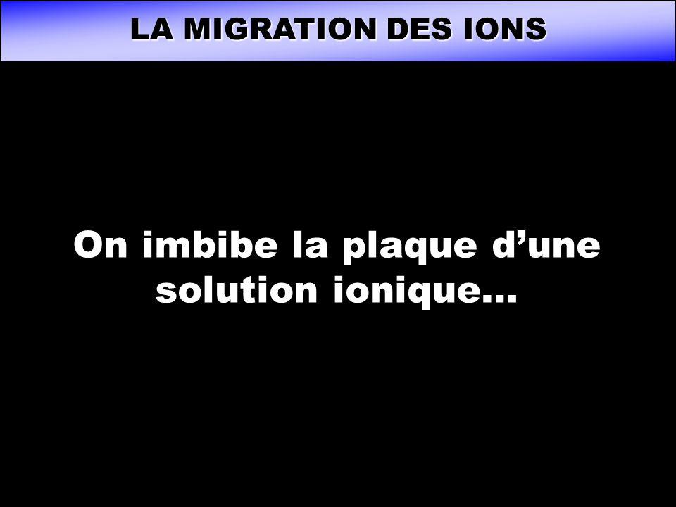 LA MIGRATION DES IONS On imbibe la plaque dune solution ionique…