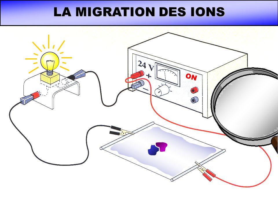 LA MIGRATION DES IONS ON