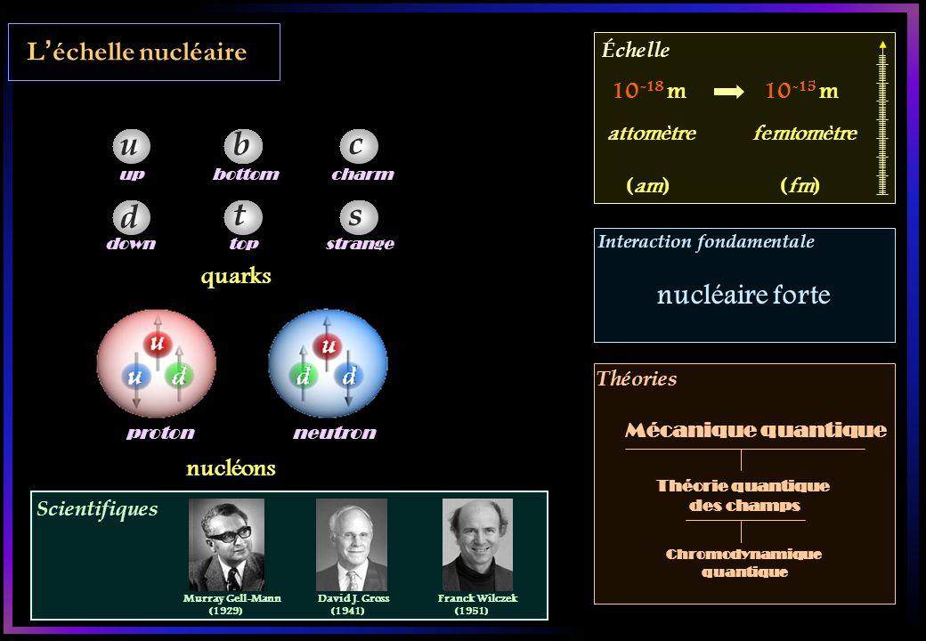 Léchelle nucléaire Scientifiques Échelle Interaction fondamentale Théories proton neutron quarks u d b t c s up down bottomcharm strangetop nucléons 10 -18 m10 -15 m attomètrefemtomètre (am)(fm) nucléaire forte Théorie quantique des champs Chromodynamique quantique Murray Gell-Mann (1929) David J.