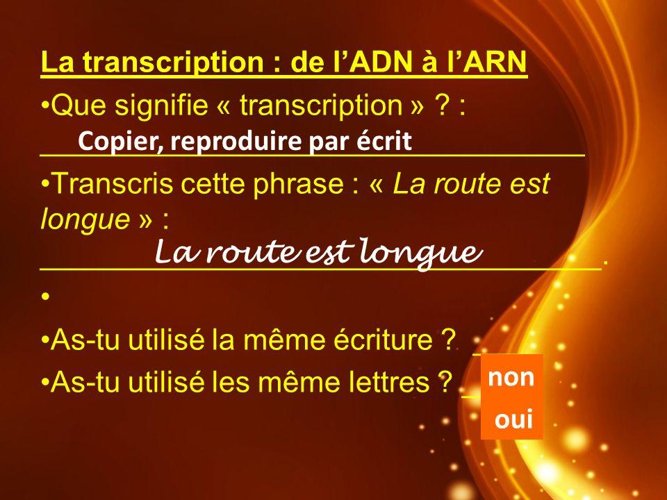 La transcription : de lADN à lARN Que signifie « transcription » ? : _________________________________ Transcris cette phrase : « La route est longue