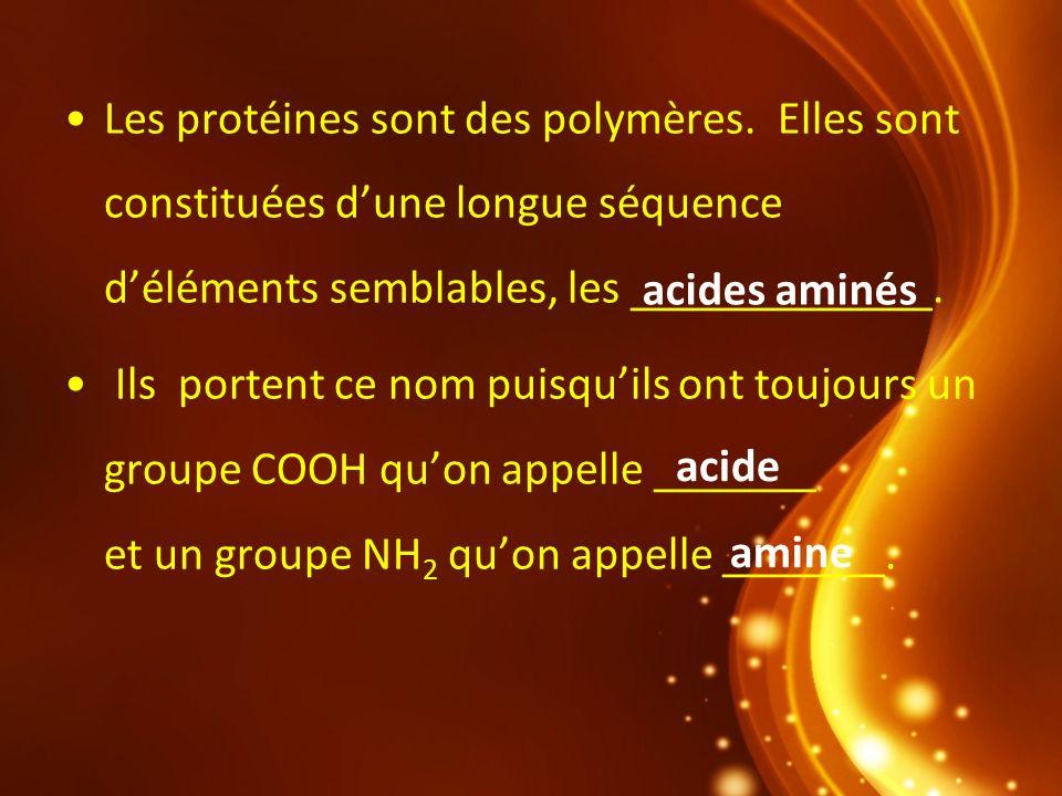 Les protéines sont des polymères. Elles sont constituées dune longue séquence déléments semblables, les _____________. Ils portent ce nom puisquils on
