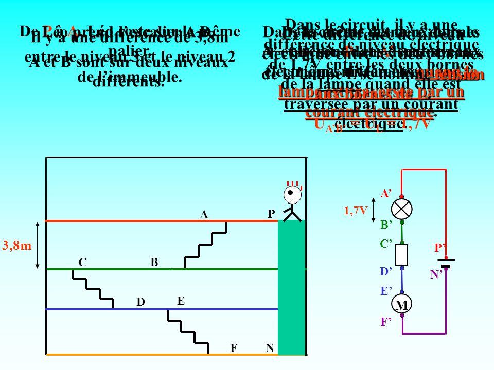 A CB E FN P D 3,8m 2,4m 1,7V 0V 1,1V De B à C, Léo reste sur le même palier.