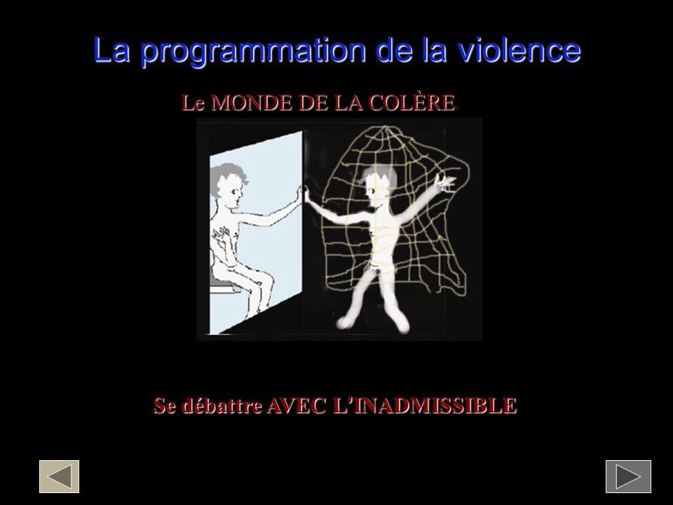 La programmation de la violence Le MONDE DE LA COLÈRE Le MONDE DE LA COLÈRE.
