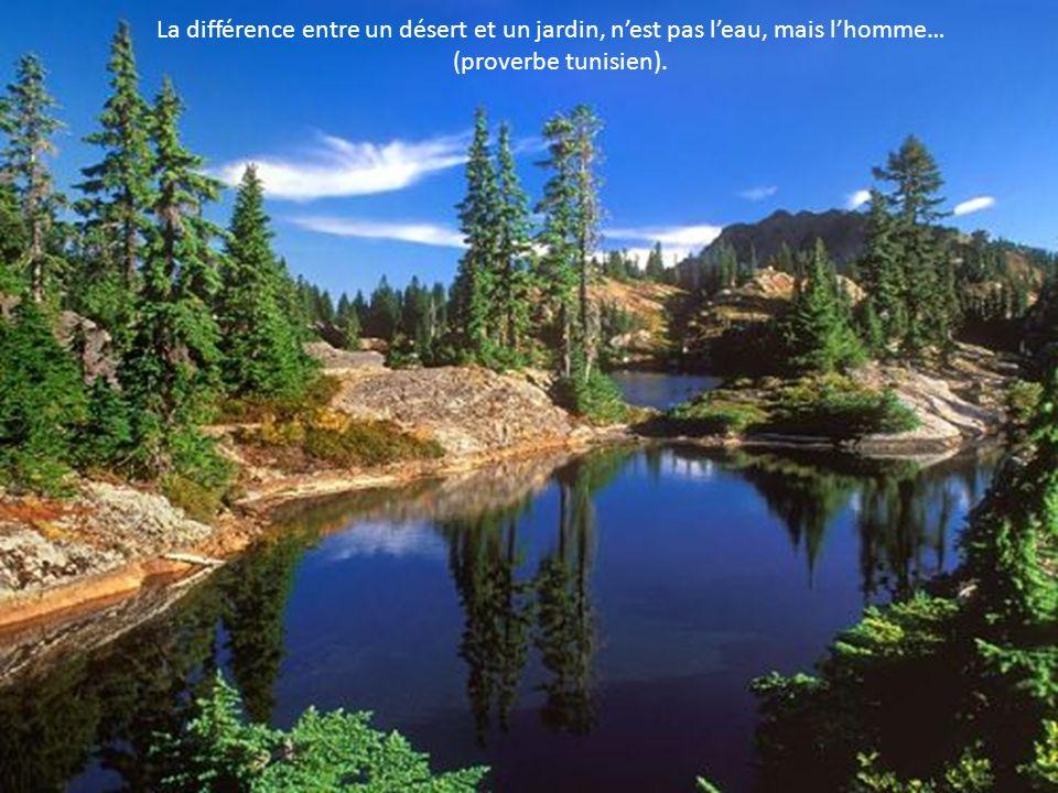 Chaque année la nature nous offre le mois de mai, pour se faire pardonner février…. (Bill Tammeus)