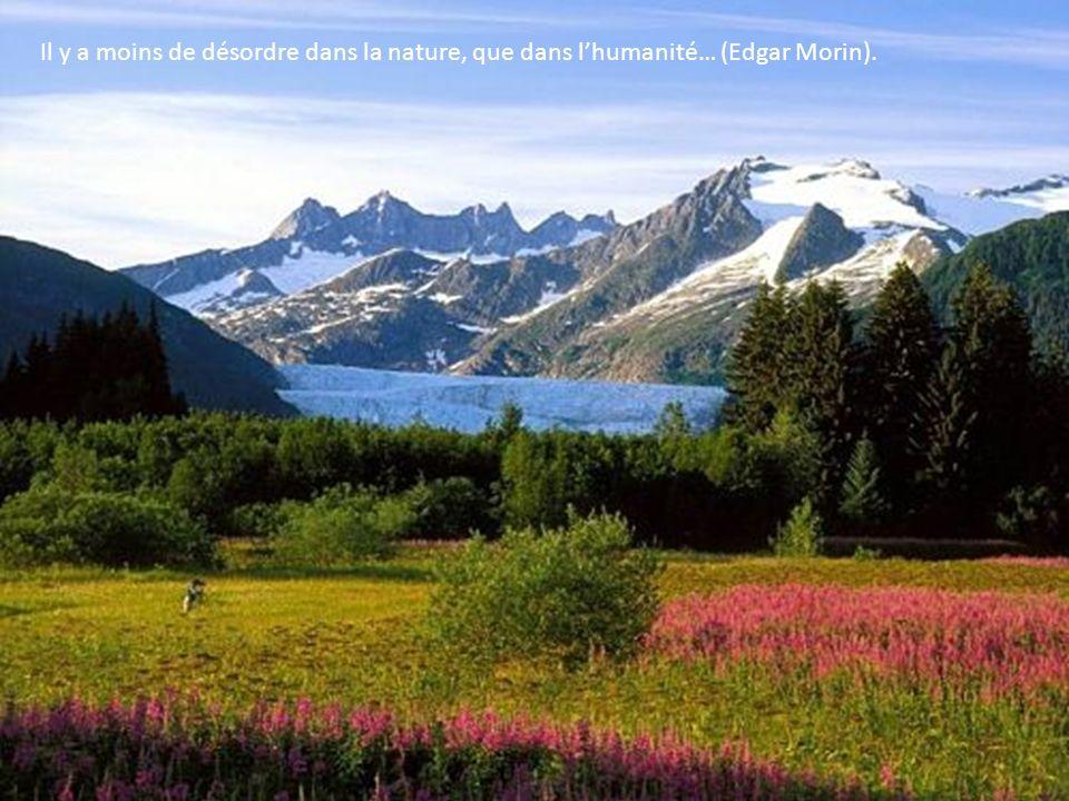 Il y a moins de désordre dans la nature, que dans lhumanité… (Edgar Morin).