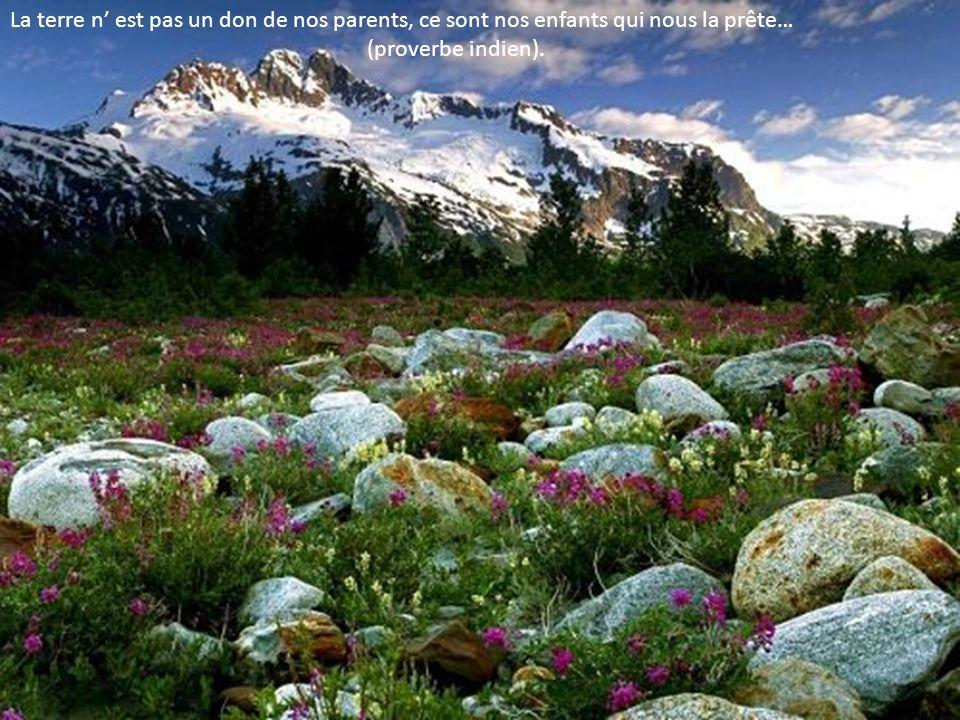 La terre n est pas un don de nos parents, ce sont nos enfants qui nous la prête… (proverbe indien).