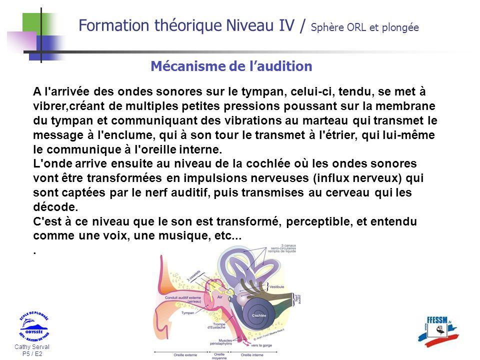 Cathy Serval P5 / E2 Formation théorique Niveau IV / Sphère ORL et plongée A l'arrivée des ondes sonores sur le tympan, celui-ci, tendu, se met à vibr