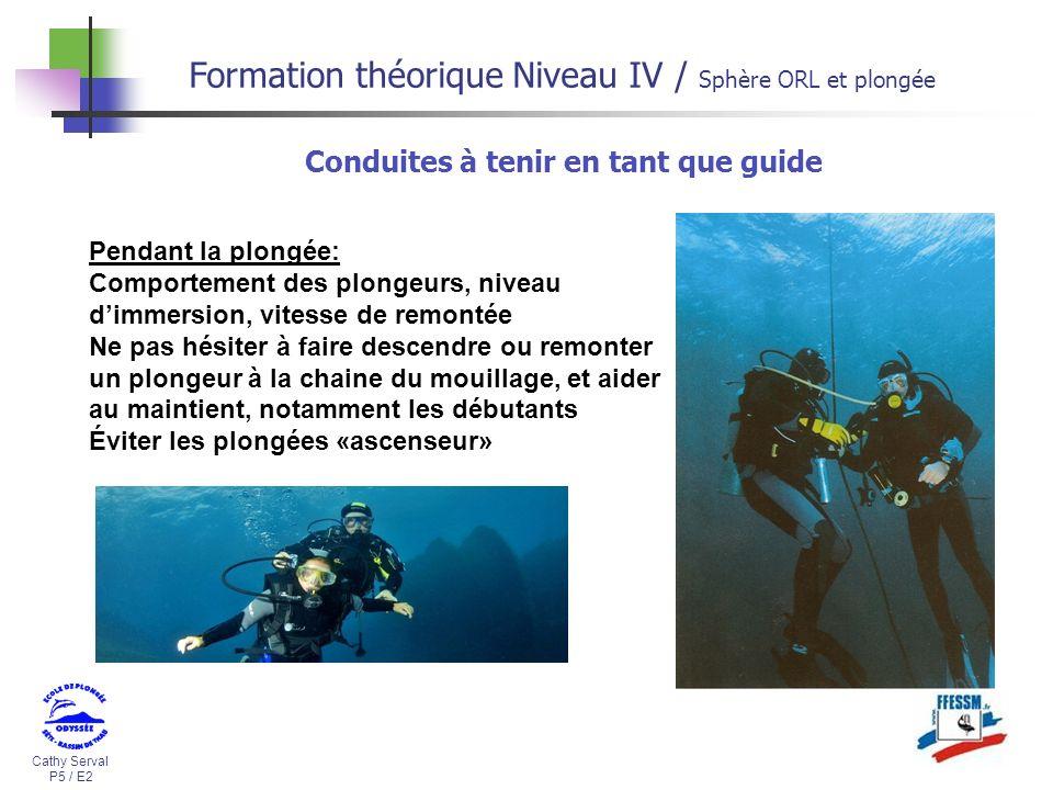 Cathy Serval P5 / E2 Formation théorique Niveau IV / Sphère ORL et plongée Pendant la plongée: Comportement des plongeurs, niveau dimmersion, vitesse
