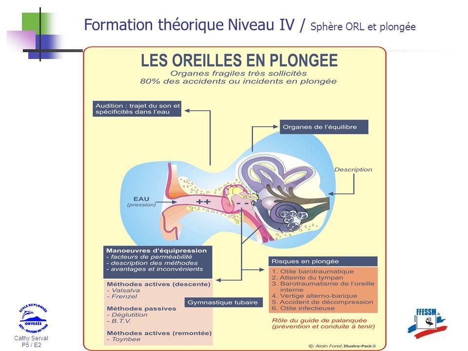 Cathy Serval P5 / E2 Formation théorique Niveau IV / Sphère ORL et plongée