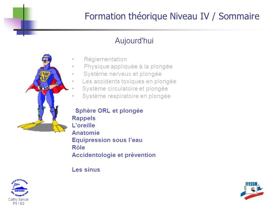 Cathy Serval P5 / E2 Formation théorique Niveau IV / Sommaire Réglementation Physique appliquée à la plongée Système nerveux et plongée Les accidents