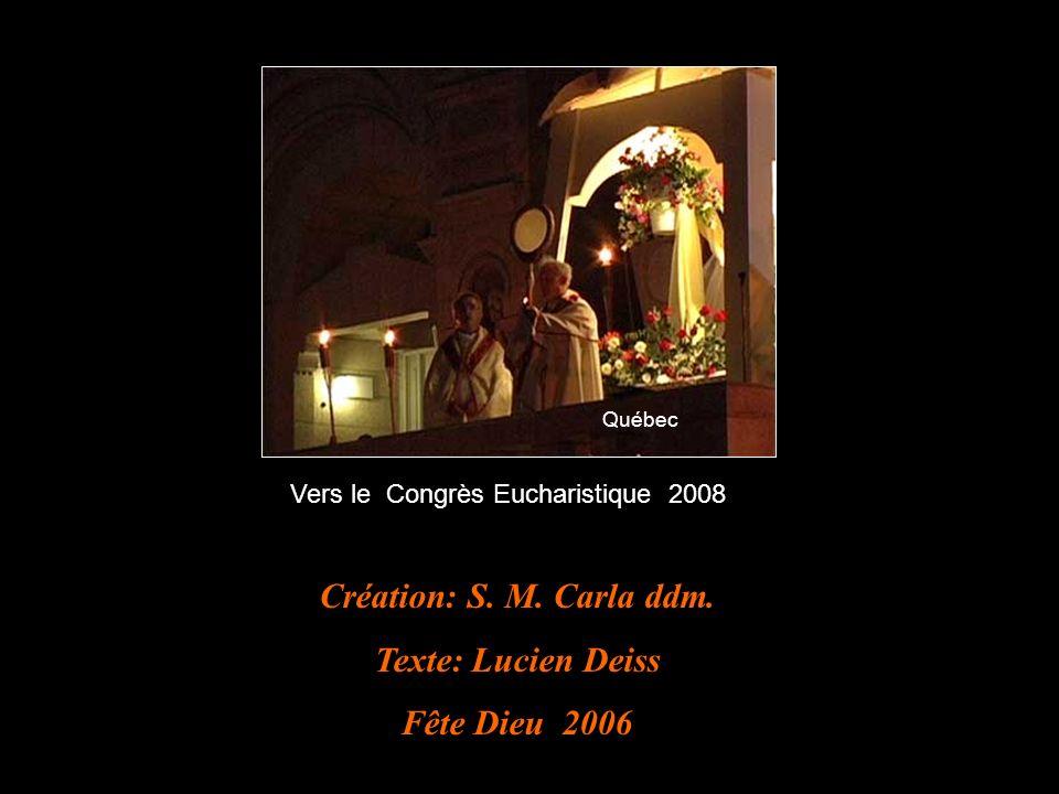Création: S.M. Carla ddm.