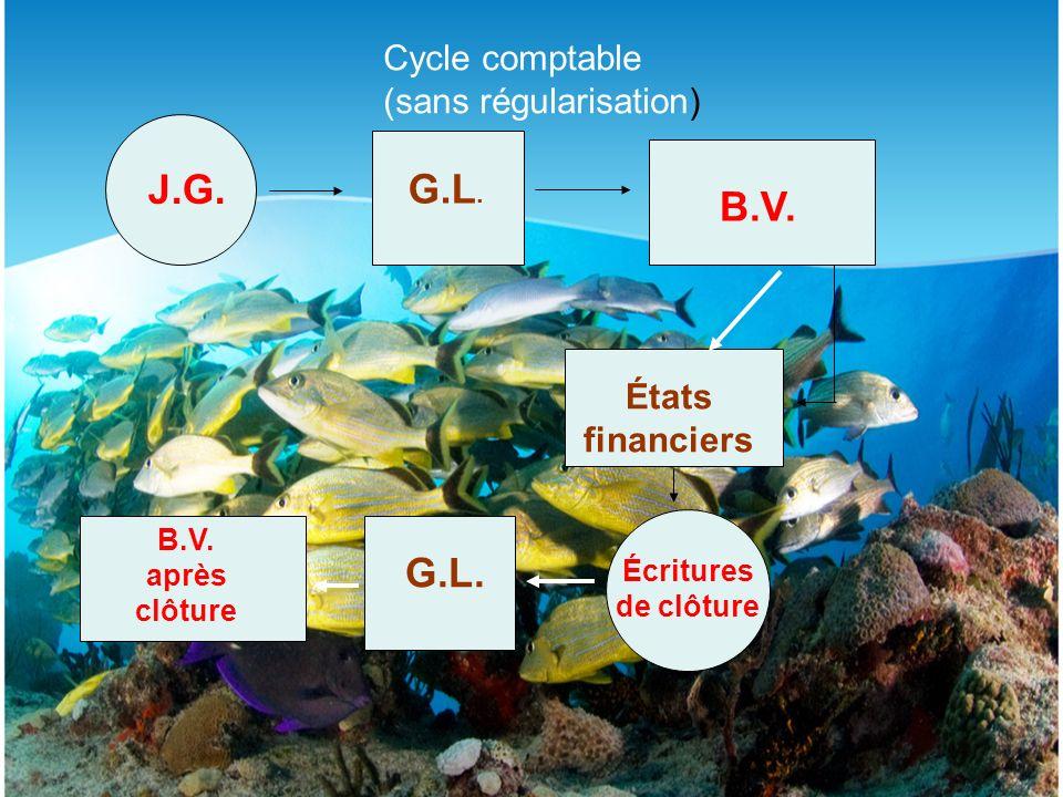 Cycle comptable (sans régularisation) J.G.G.L. B.V.