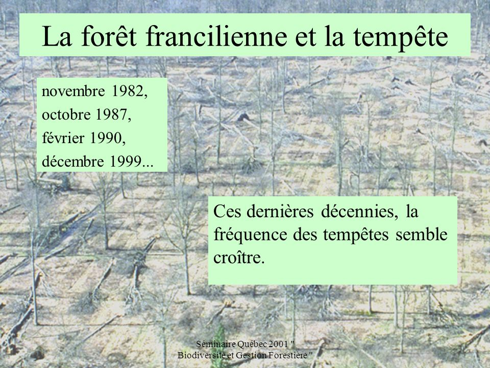 Séminaire Québec 2001