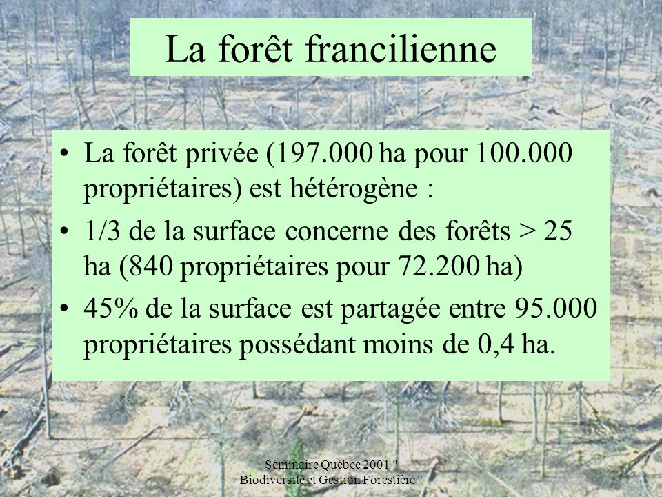 Séminaire Québec 2001 Biodiversité et Gestion Forestière La forêt francilienne et la tempête Les causes des dégâts4 Les facteurs climatiques : intensité du vent (pointes de plus de 150 km/h, moyennes sur 10 minutes de plus de 100 km/h) pluie de 113 à 206 mm en décembre, soit 2 à plus de 3 fois la normale Les autres facteurs : les peuplements, les sols (saturation en eau ?), les essences (les conifères ont été plus touchés), le passage récent en éclaircie, la proximité de coupes et clairières… leur degré dimplication est en cours dévaluation