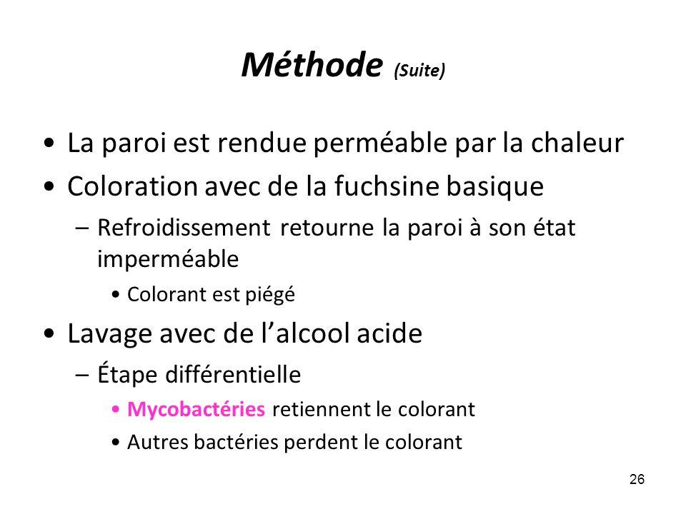 Méthode (Suite) La paroi est rendue perméable par la chaleur Coloration avec de la fuchsine basique –Refroidissement retourne la paroi à son état impe