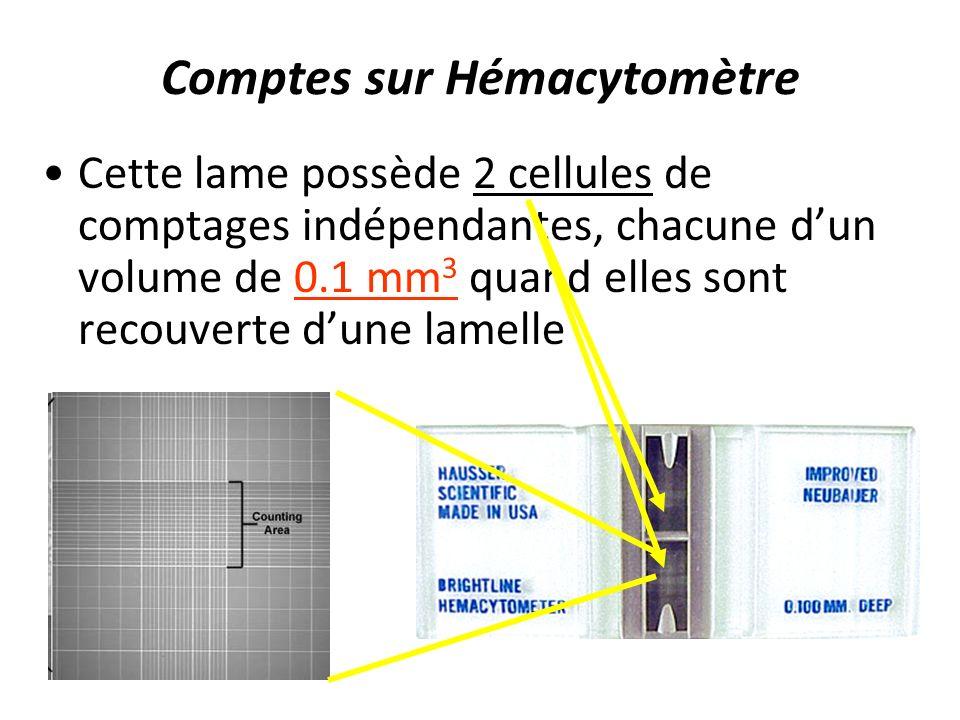 Comptes sur Hémacytomètre Cette lame possède 2 cellules de comptages indépendantes, chacune dun volume de 0.1 mm 3 quand elles sont recouverte dune la