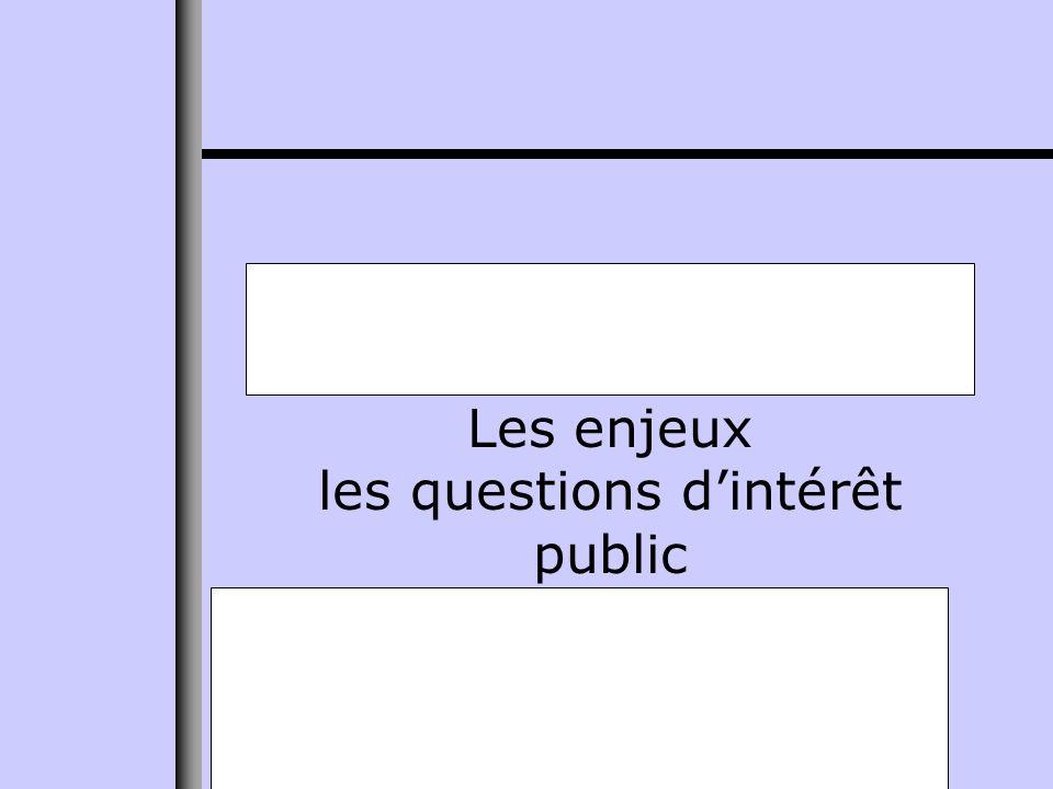 Les enjeux les questions dintérêt public
