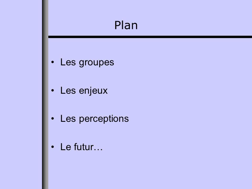 Plan Les groupes Les enjeux Les perceptions Le futur…