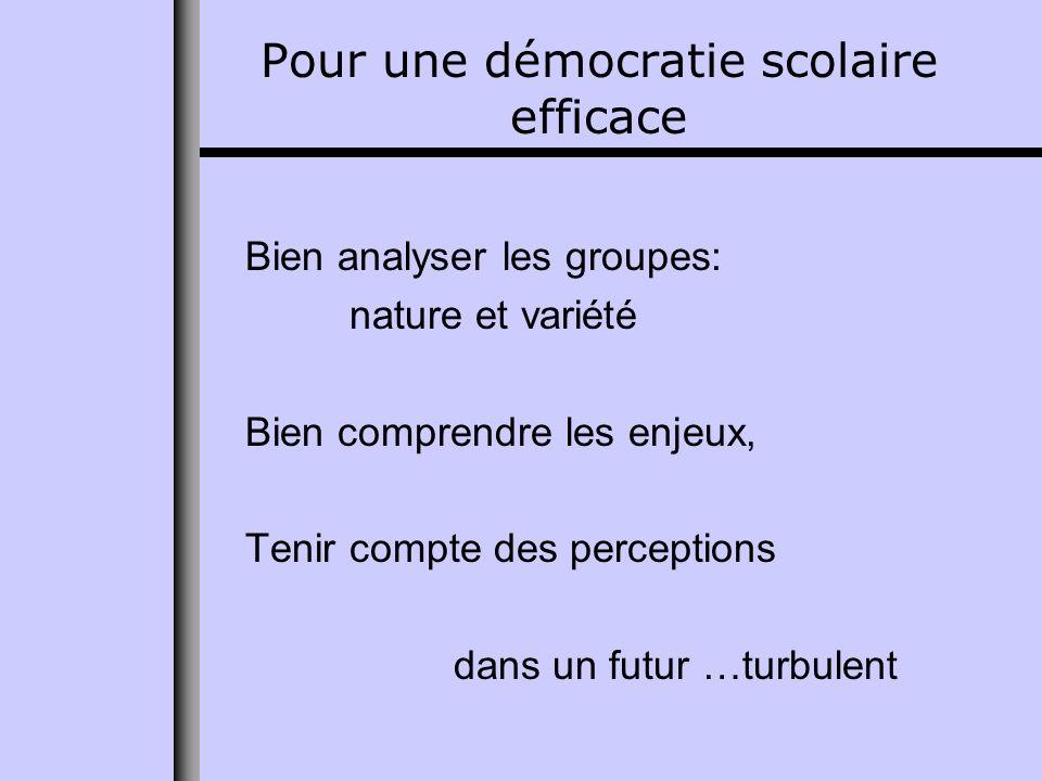 Pour une démocratie scolaire efficace Bien analyser les groupes: nature et variété Bien comprendre les enjeux, Tenir compte des perceptions dans un futur …turbulent
