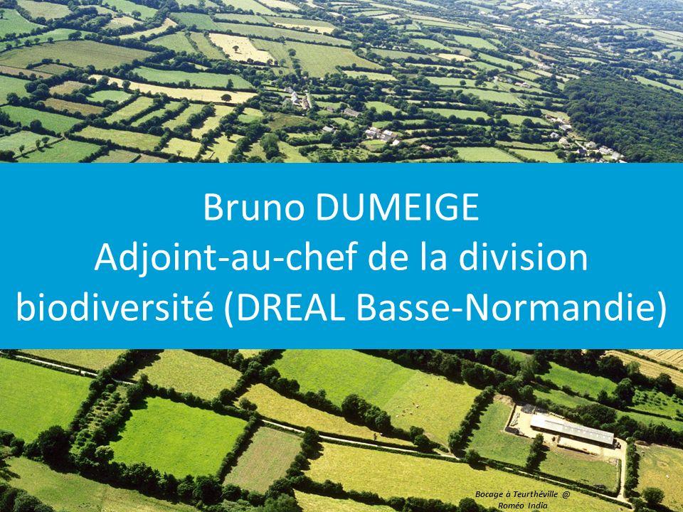 Bruno DUMEIGE Adjoint-au-chef de la division biodiversité (DREAL Basse-Normandie) Bocage à Teurthéville @ Roméo India