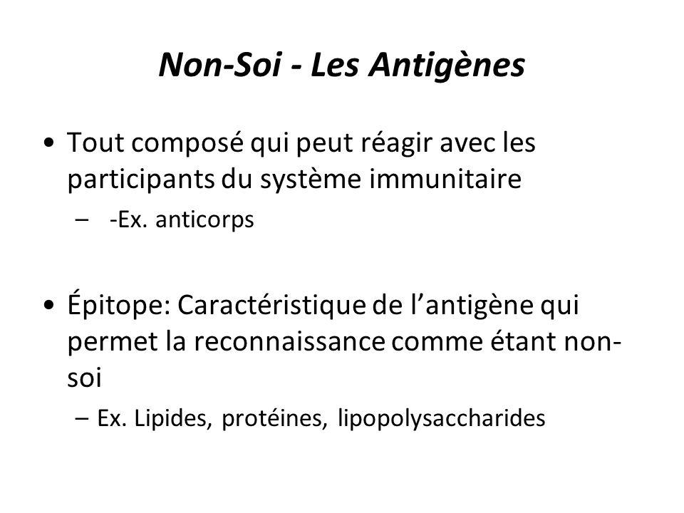 Non-Soi - Les Antigènes Tout composé qui peut réagir avec les participants du système immunitaire –-Ex. anticorps Épitope: Caractéristique de lantigèn