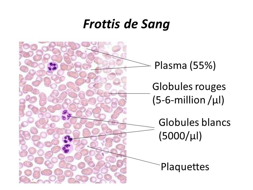 Frottis de Sang Plasma (55%) Globules rouges (5-6-million /µl) Globules blancs (5000/µl) Plaquettes