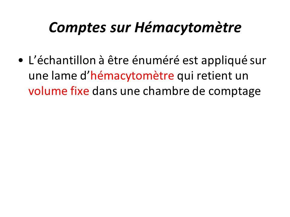 Comptes sur Hémacytomètre Léchantillon à être énuméré est appliqué sur une lame dhémacytomètre qui retient un volume fixe dans une chambre de comptage