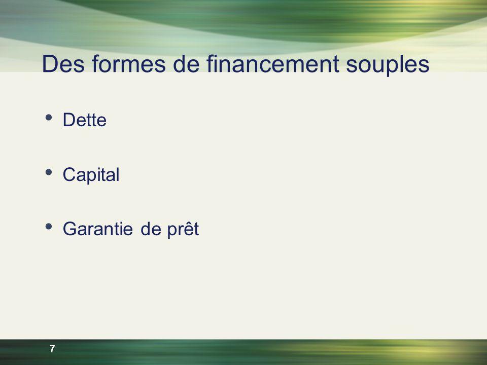 7 Des formes de financement souples Dette Capital Garantie de prêt