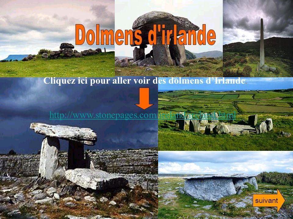 http://www.stonepages.com/ireland/ireland.html Cliquez ici pour aller voir des dolmens dIrlande. suivant
