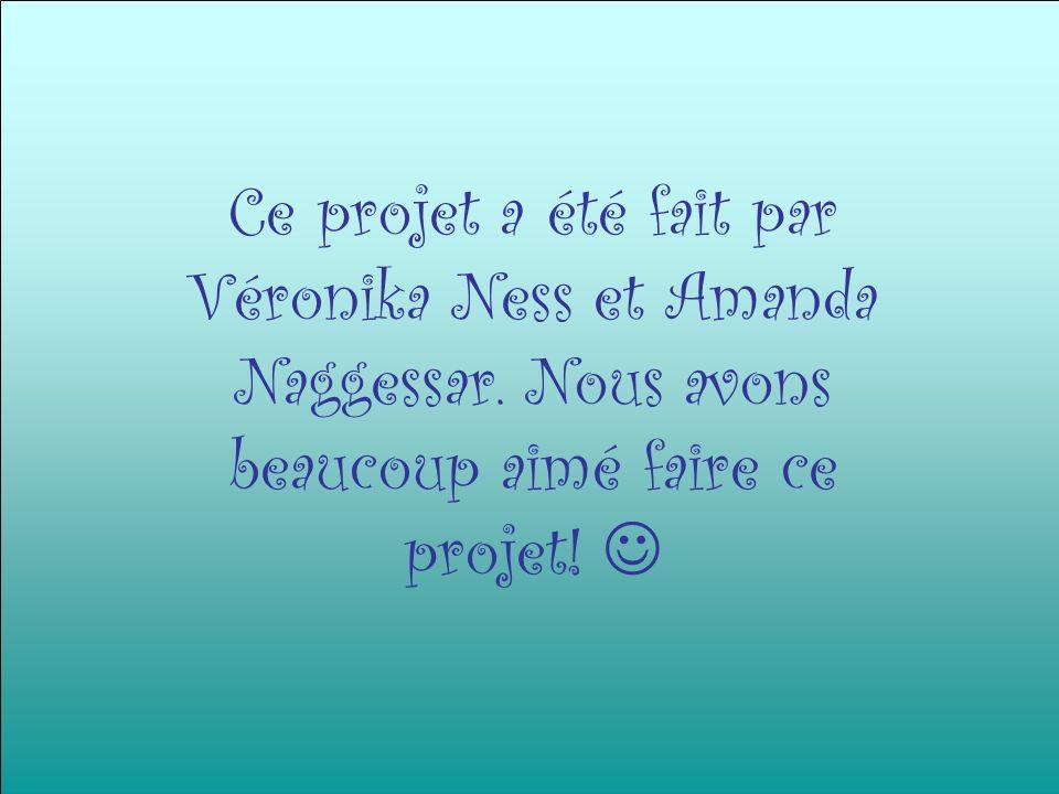 Ce projet a été fait par Véronika Ness et Amanda Naggessar. Nous avons beaucoup aimé faire ce projet!