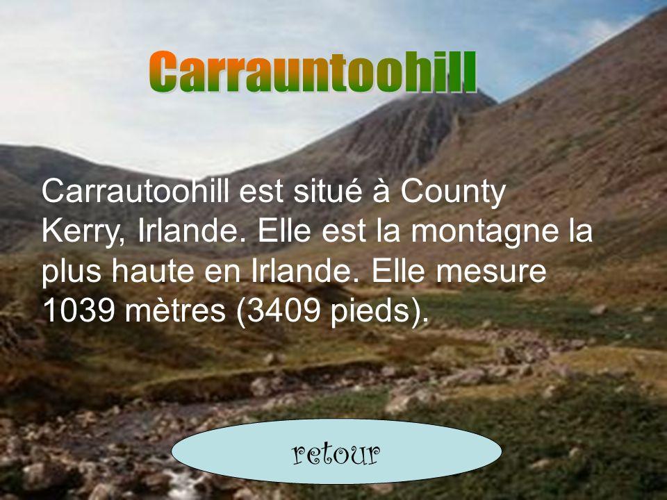 Carrautoohill est situé à County Kerry, Irlande. Elle est la montagne la plus haute en Irlande. Elle mesure 1039 mètres (3409 pieds). retour