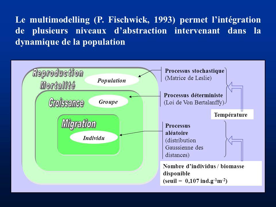 Le multimodelling (P. Fischwick, 1993) permet lintégration de plusieurs niveaux dabstraction intervenant dans la dynamique de la population Population