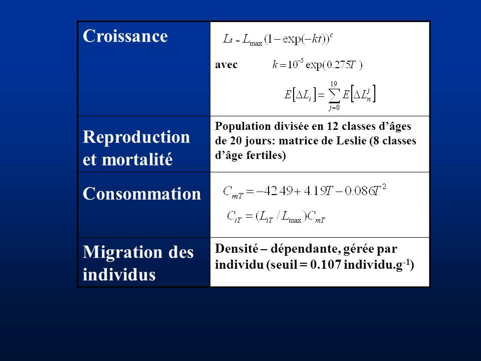 Croissance avec Reproduction et mortalité Population divisée en 12 classes dâges de 20 jours: matrice de Leslie (8 classes dâge fertiles) Consommation