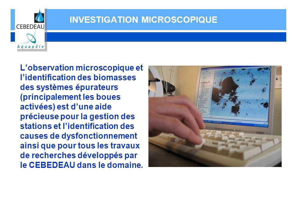 INVESTIGATION MICROSCOPIQUE Lobservation microscopique et lidentification des biomasses des systèmes épurateurs (principalement les boues activées) es