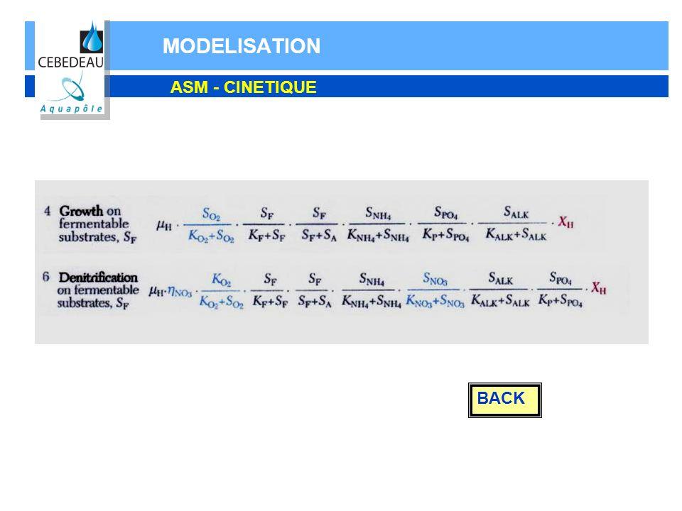 MODELISATION ASM - CINETIQUE BACK