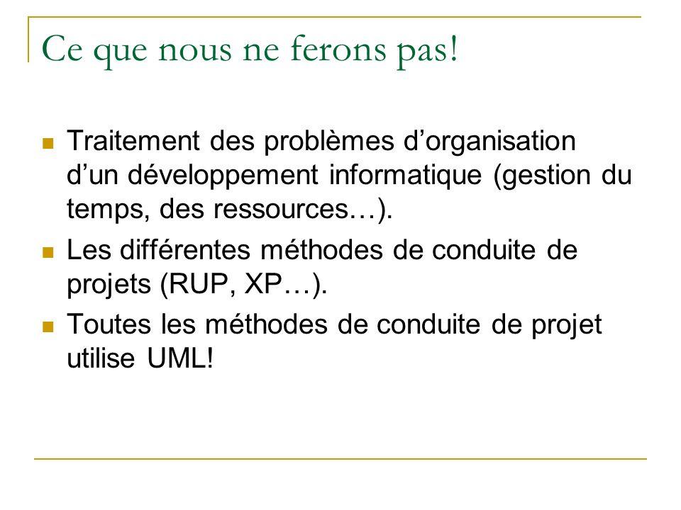 Ce que nous ne ferons pas! Traitement des problèmes dorganisation dun développement informatique (gestion du temps, des ressources…). Les différentes