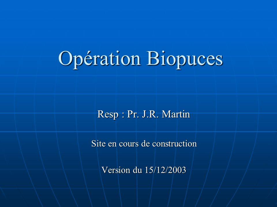 Opération Biopuces Resp : Pr. J.R. Martin Site en cours de construction Version du 15/12/2003