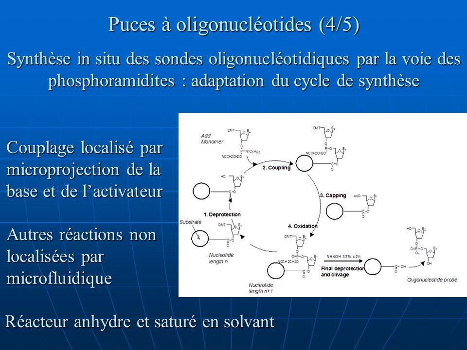 Puces à oligonucléotides (4/5) Synthèse in situ des sondes oligonucléotidiques par la voie des phosphoramidites : adaptation du cycle de synthèse Coup