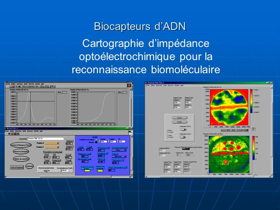 Biocapteurs dADN Cartographie dimpédance optoélectrochimique pour la reconnaissance biomoléculaire