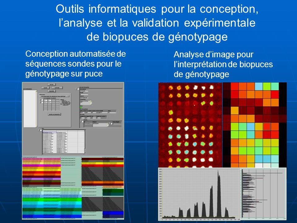 Conception automatisée de séquences sondes pour le génotypage sur puce Analyse dimage pour linterprétation de biopuces de génotypage Outils informatiq