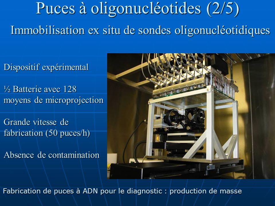 Puces à oligonucléotides (2/5) Immobilisation ex situ de sondes oligonucléotidiques Dispositif expérimental ½ Batterie avec 128 moyens de microproject