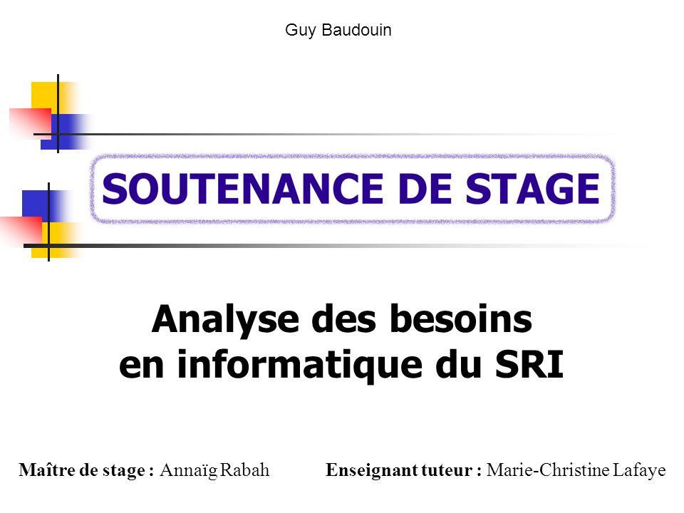 Analyse des besoins en informatique du SRI Guy Baudouin Maître de stage : Annaïg Rabah Enseignant tuteur : Marie-Christine Lafaye