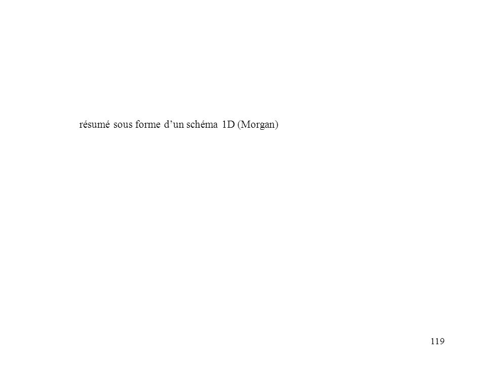119 résumé sous forme dun schéma 1D (Morgan)