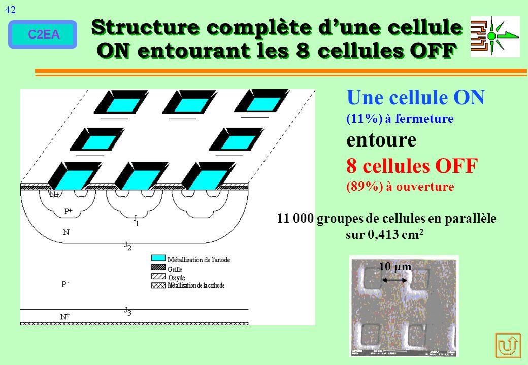 C2EA Structure complète dune cellule ON entourant les 8 cellules OFF 42 Une cellule ON (11%) à fermeture entoure 8 cellules OFF (89%) à ouverture 10 m