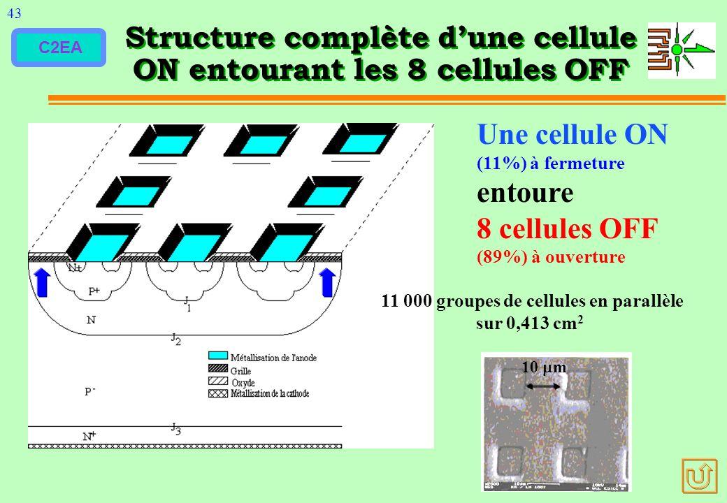 C2EA Structure complète dune cellule ON entourant les 8 cellules OFF 43 10 m 11 000 groupes de cellules en parallèle sur 0,413 cm 2 Une cellule ON (11